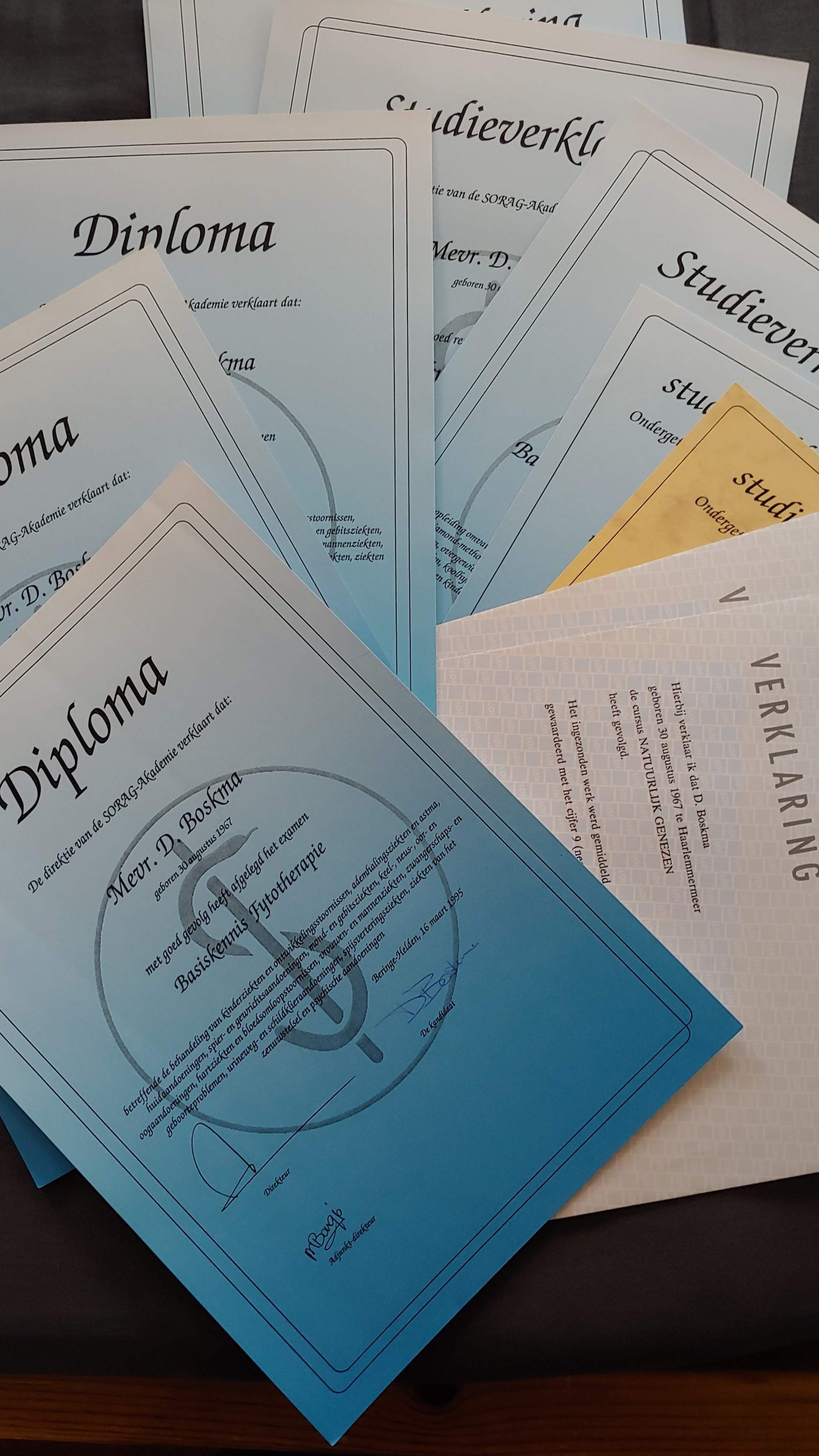 Diploma's and certificates