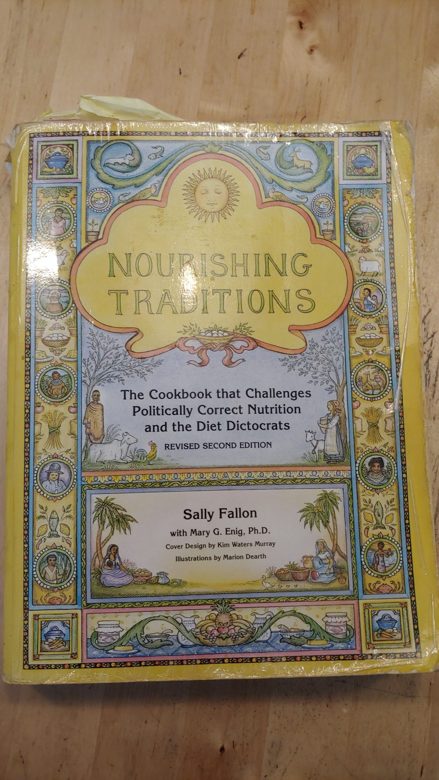 Well used Nourishing Traditions Cookbook